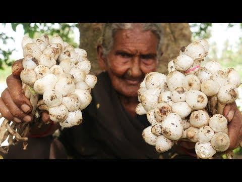Mushroom Recipe || Traditional Mushroom Curry By Granny Mastanamma