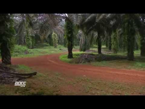 APRC14 Malaysian  Rally - Half-hour TV Programme