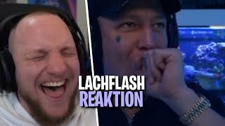REAKTION auf TWICH AM LIMIT 47 & 48 - LACHFLASH | ELoTRiX Livestream Highlights