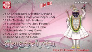 Hemant Chauhan || Shreenathjini Seva Part-2 || Shrinathji Bhajan