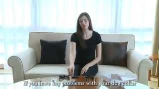 Aetertek At-211sw Model Dog Training Collar Set Up Video