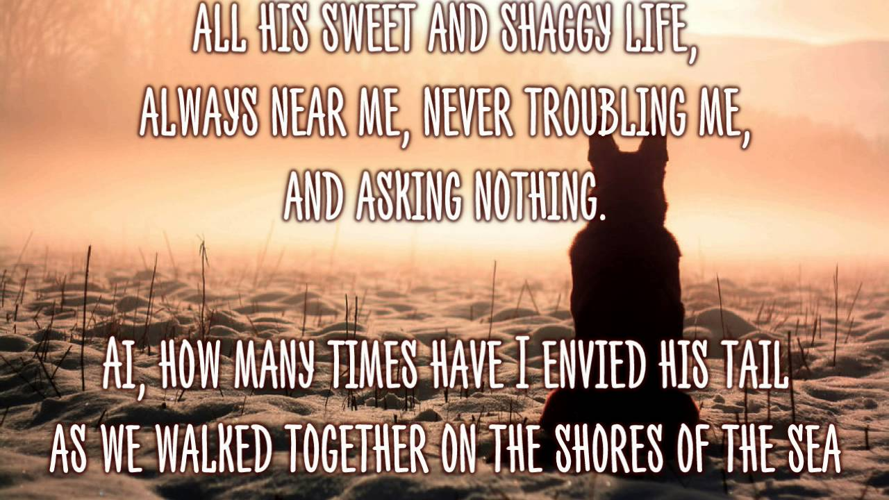 A Dog Has Died - Forever In My Heart - Touching Poems Quotes