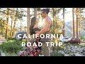 California Road Trip // LA to Lake Tahoe!