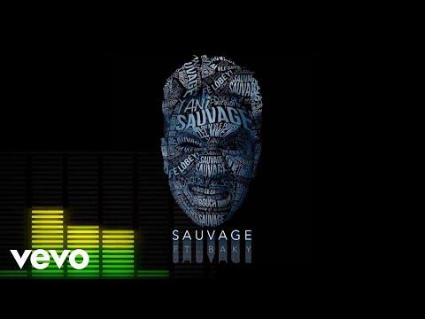 Baky Popile - Sauvage Audio ft. Yani Martelly