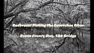 Fishing Georgia's Canoochee River