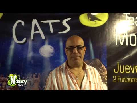 CATS el Musical en Toluca 2014