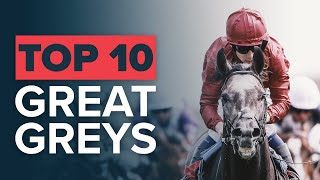 TOP 10 GREATEST GREY RACEHORSES: SILVER CHARM & ROARING LION