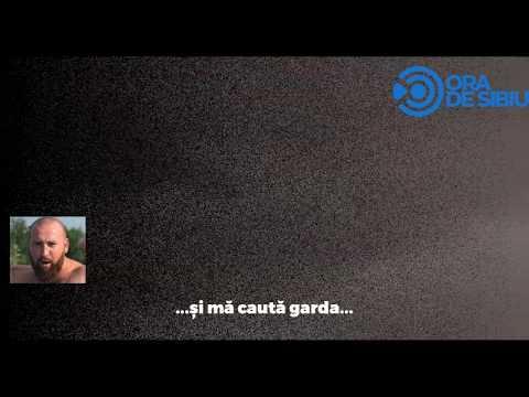 Înregistrare Audio - Crima de la Mediaș - Criminalul se confesează