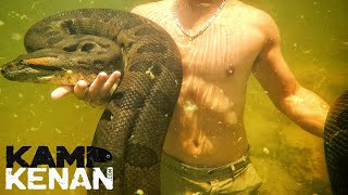 swimming-with-a-giant-green-anaconda