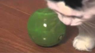 PetSafe SlimCat Interactive Feeder Ball for Cats
