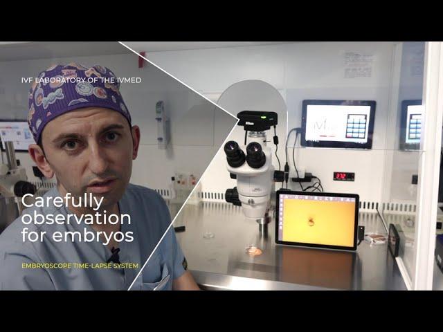 Embryoscope time lapse system