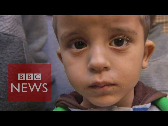 Daily life in Syria 'worse than death' - BBC News