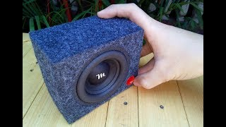 Car Bass Boosted Song Mini Subwoofer (Earthquake Bass Test)