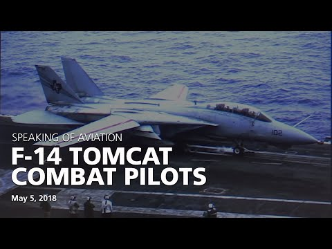The American FIghter Aces Assosiation's F-14 Tomcat Panel Discussion