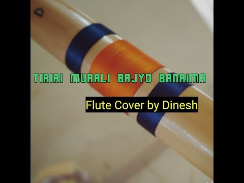 Tiriri Murali Bajyo Banaima Flute Cover by Dinesh