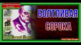 Болтливая сорока— Евгений Чарушин—  читает Павел Беседин