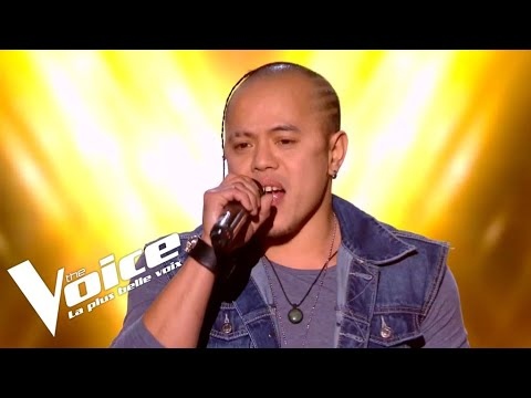 Tina Turner - The Best   Haza   The Voice 2019   Blind Audition