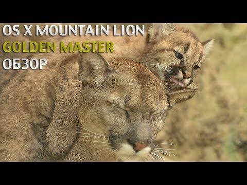 Mountain Lion Golden Master - обзор