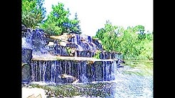 Bay Beach Wildlife Sanctuary | Green Bay Wisconsin | Free Visitor Attractions