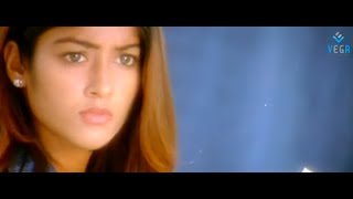 Aata Movie Songs - Hoyna Song - Siddharth, DSP