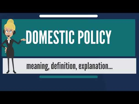 What Is DOMESTIC POLICY? What Does DOMESTIC POLICY Mean? DOMESTIC POLICY Meaning & Explanation