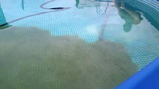 Очистка бассейна своими силами
