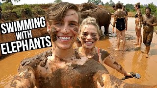TAKING A MUD BATH WITH ELEPHANTS! - CHIANG MAI