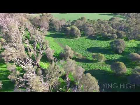 Wandi, Western Australia - From Above