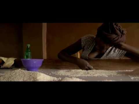 Benin - Rizerie Glazoue
