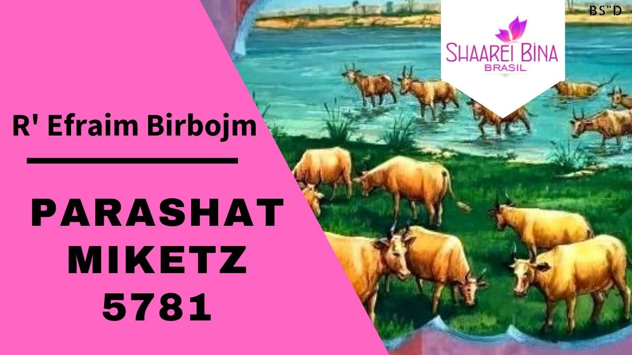 Parashat Miketz 5781/ 2020