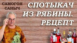 СПОТЫКАЧ - рецепт из РЯБИНЫ / Рецепты наливок