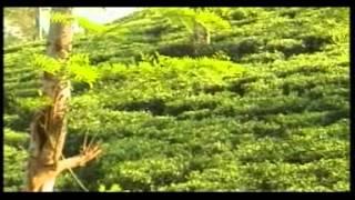 Download BHAGI BHAGI, LUKI LUKI MP3 song and Music Video