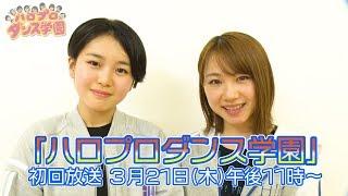 【予告②】ハロプロダンス学園 3/21(木) 23時からダンスチャンネルで放送開始!