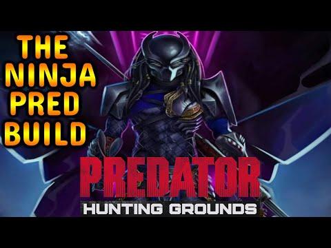 THE NINJA PRED BUILD Predator Hunting Grounds High Level Gameplay