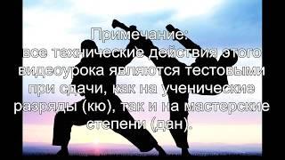 """15 видеоурок Уке но гогенри (Uke no go genri) -  """"Пять принципов защиты»."""