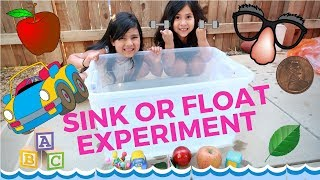 sink or float experiment for kids