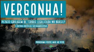 Câmara dos Deputados legaliza a grilagem de terras no Brasil e mais notícias socioambientais
