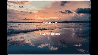 Pedro Cap Farruko Calma Tommy T Remix Edit.mp3