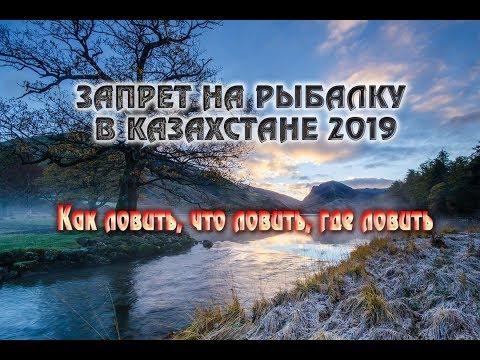 ЗАПРЕТ НА РЫБАЛКУ В КАЗАХСТАНЕ 2019. Как ловить в запрет, что ловить в запрет, где ловить в запрет