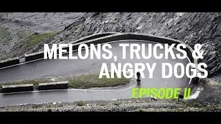 MELONS, TRUCKS & ANGRY DOGS: PART II