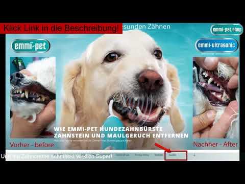 Claudia Franke - Wie wendet man die Emmi-Pet Hundezahnbürste