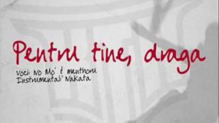 KaTaNa - Pentru tine, draga (2009 Remake)