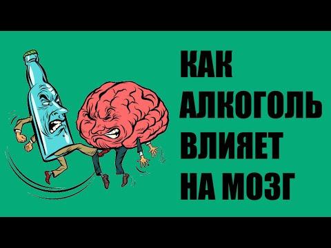 Как алкоголь влияет на мозг и память?