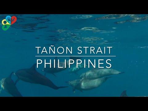Tañon Strait - Biodiversity Management Bureau
