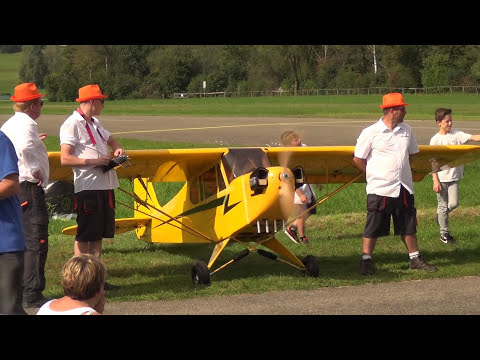 Gigantic Rc Piper And Super Decathlon Planes Hausen 2017 Flight Show