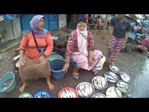 AgriStream TV - Serunya Hiruk Pikuk Pasar Ikan Muncar Banyuwangi