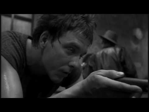 Rumble Fish Clip - Night Out