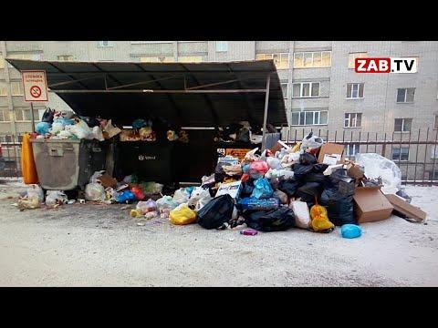 Зачем жители улицы Петровско-заводской пересматривают ночные видеосъёмки своего двора?