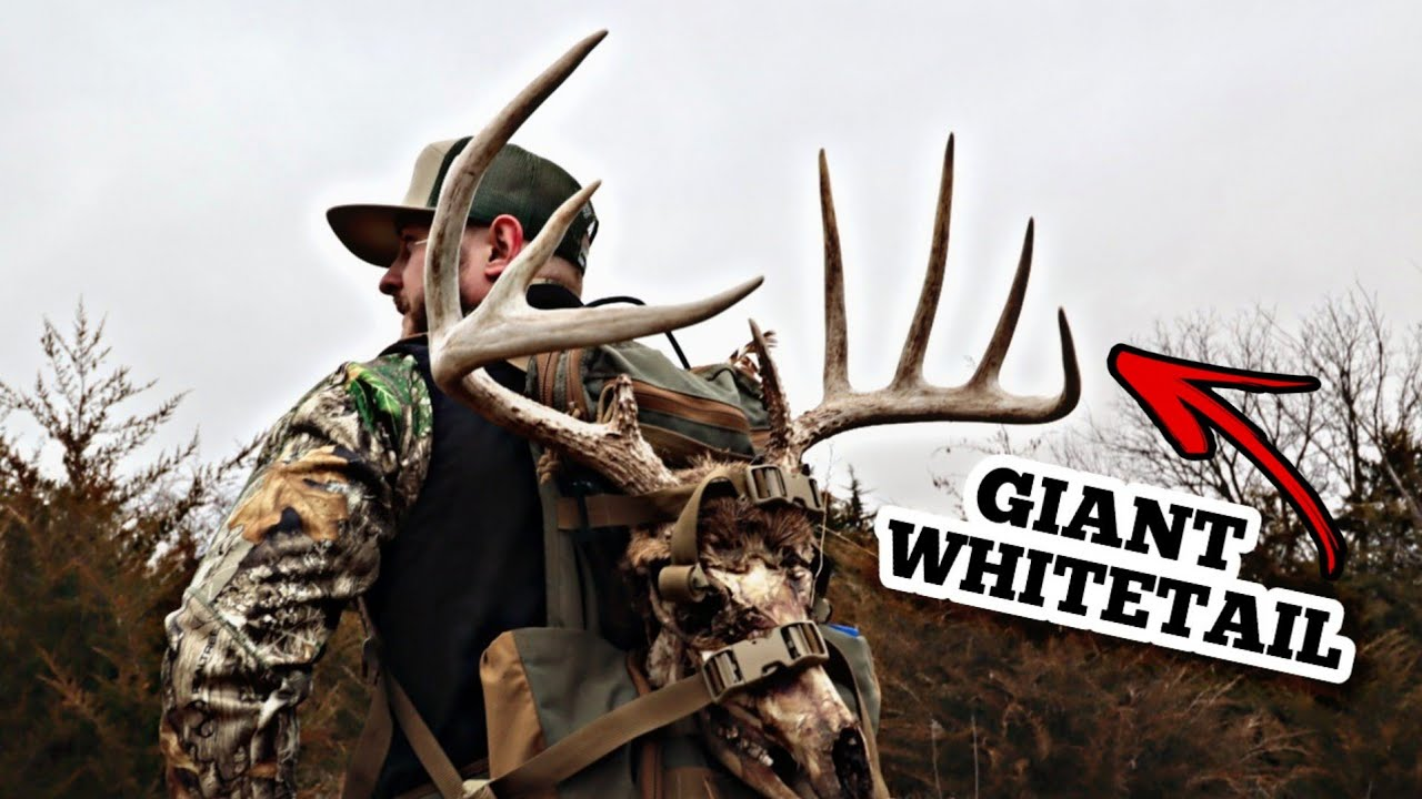 I CANT BELIEVE WE FOUND THIS.... (GIANT WHITETAIL)