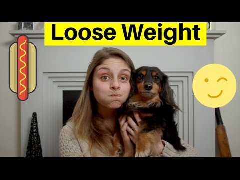 HOW TO HELP YOUR DOG LOSE WEIGHT 5 GREAT STEPS